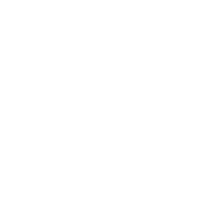 Puffing Billy Cycles Dartmoor Devon
